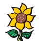 Sunflower Montessori School